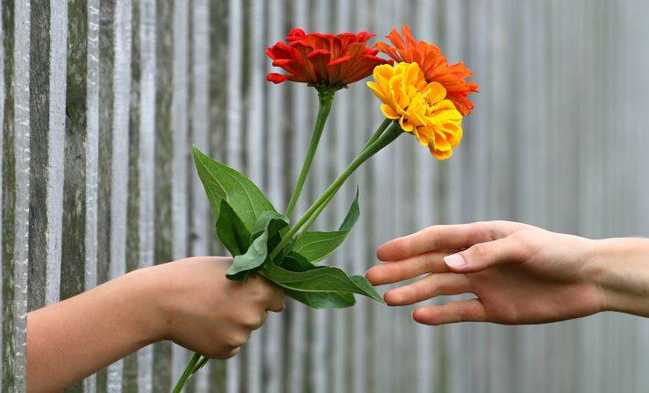 Hand mit Blumen Verlosung